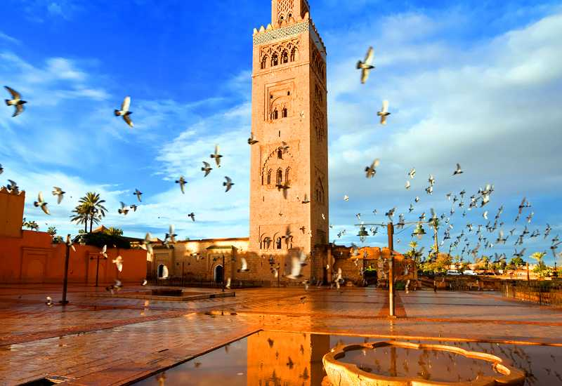 14 Days Grand Morocco Tour From Casablanca