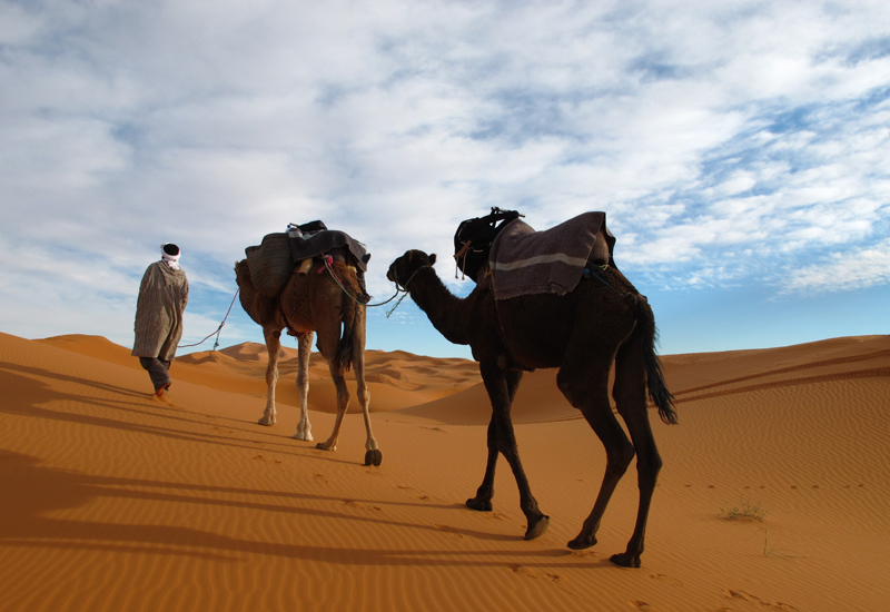 5 Day Morocco tour from Marrakech to Chefchaouen via Sahara Desert